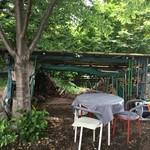 cafe KO-BA - 森の木陰でどんじゃらほい