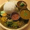 ネパール ミテリキッチンレストラン&バー - 料理写真:ネパールセット