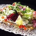 テイストシックス - 菜園風!鴨のカルパッチョ☆TASTE-6が作るカルパッチョがこうなります♪