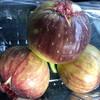 農産物直売所 菜果な花 - 料理写真:いちじく