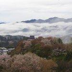 桜美荘たいら - 宿前からの景色。蔵王堂を眼下に望めます。