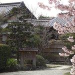 桜美荘たいら - 桜に囲まれた一軒宿