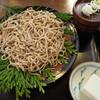 能登 手仕事屋 - 料理写真:十割蕎麦 生蕎麦