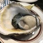71475664 - 御荘湾産の牡蠣