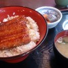 大衆割烹 日本 - 料理写真:うな丼