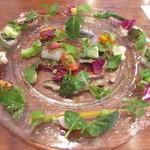 71500913 - 8月の野菜畑と海の幸の一皿のサラダ マリネしたイワシ 淡路島の穴子とハモ 長崎の先イカ 北海道のニシン 明石の小ダコ