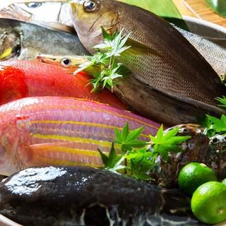 『漁港直送の新鮮美味な魚介類』高知県宿毛や岩手県大船渡より