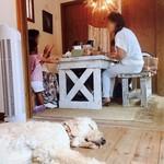 71529809 - 店内奥テーブル席と看板犬