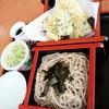 遊鶴 - 料理写真:天せいろ 990円