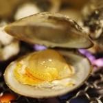 日本のお酒と浜焼料理‐ウラオンサカバ‐ - 白ハマグリ(浜焼き)