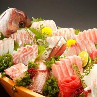 朝獲れ鮮魚を使用した自慢の料理!