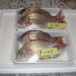 ミルクランド - 新鮮な子鯛です。煮付けに最高でした。