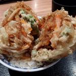そば 俺のだし - 野菜かき揚げ丼(500円)