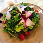 71626938 - パクチーと彩り野菜のサラダ
