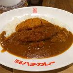 渋谷ハチカレー - 渋谷ハチカツカレー 850円 + ライス大盛り 100円
