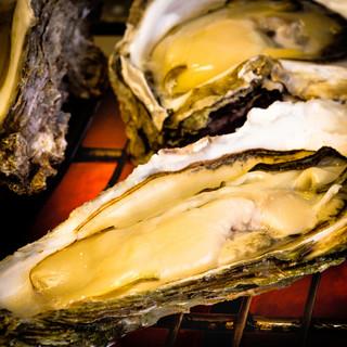 全国各地から仕入れた当店自慢の新鮮牡蠣をご賞味ください。