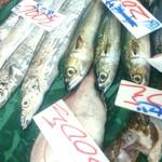 丸栄鮮魚店 - 今にも泳ぎだしそうなお魚さん達