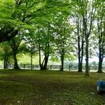71776028 - [2017/07]矢ケ崎公園に到着した時には…