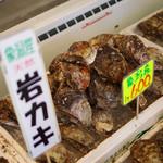 土田水産 - 料理写真:岩牡蠣陳列