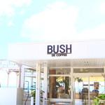 BUSH -
