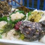 719391 - 伊勢海老と夜行貝の造り