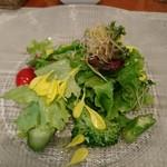 小林食堂 - 小林食堂の野菜サラダ