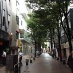 72072119 - 熊本は銀杏並木がいっぱい