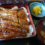 うなぎ安田屋 - 料理写真:うな重