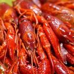 イケア港北 フードマーケット - 料理写真:アップのザリガニ集団て、、、すごいですね(;´∀`)