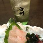 九州桜 -