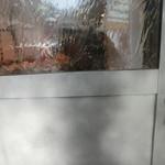 ハナカゴ - ドア
