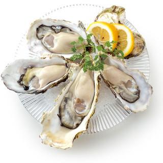 【7/1~7/11ご予約限定】初夏の生牡蠣食べ放題