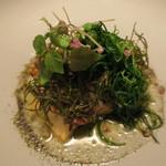 ナイン ストーリーズ - 魚料理:黒鯛のポワレとおかひじき すもものソースと焦がしバター ゆかりのパウダー3