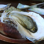 宮本水産 - 牡蠣コース