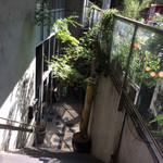 Solomons - 階段を降りて行きます