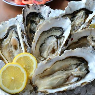全国各地の新鮮な牡蠣をご用意してお待ちしております!