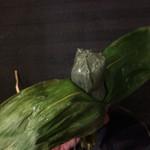 笹だんご家 - 新川屋の笹だんご  冷やして食べるとより美味しい