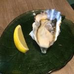 72545740 - 生牡蠣