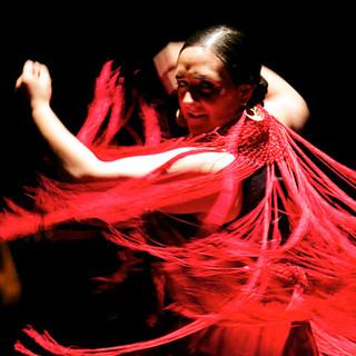 週末には臨場感あふれるダンスパフォーマンスも!