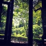 72621561 - 窓辺の清々しい景色
