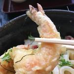 讃岐屋 雅次郎 - 海老天あっぷ☆〜(ゝ。.∂)v
