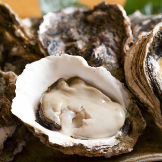 夏の牡蠣、岩牡蠣を入荷しました!旬の岩牡蠣食べ比べできます!