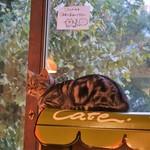 猫の時間 - キュート♥
