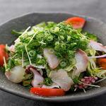 肉×魚×日本酒 照 - 『鮮魚の海鮮サラダ』