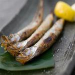 肉×魚×日本酒 照 - 『焼きししゃも』