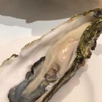 エミット フィッシュバー オイスター&グリル - 初夏の生牡蠣(岩手県釜石湾産)