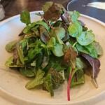 organ - 道産 生帆立とブッラータ、水なす、柑橘のサラダ②テーブルで葉野菜をのせてくれます