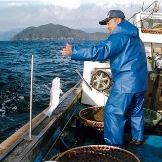全国の漁場より代表のネットワークを使った仕入れ