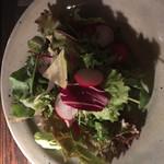 72903220 - 彩り野菜と葉野菜のサラダ