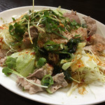 餃子屋麺壱番館 - 料理写真:蒸し豚のピリ辛サラダ
